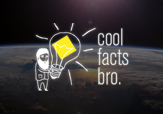 Cool Facts Bro