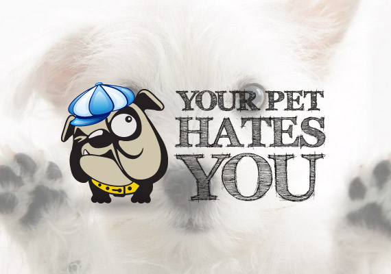 your pet hates you
